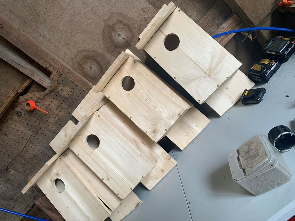 Four Kestrel boxes waiting to be hung